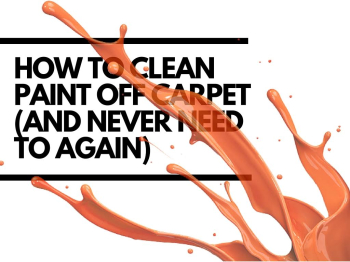 How to clean paint off carpet (and never need to again)